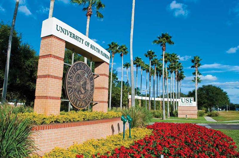 Medium usf campus sign